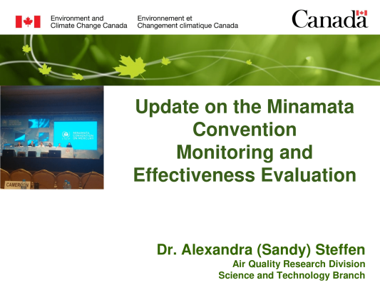 First page of Update on the Minamata Convention Monitoring and Effectiveness Evaluation
