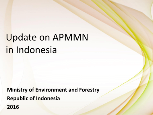 First page of Update on APMMN in Indonesia