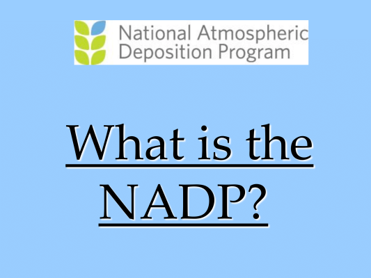 First page of NADP MDN AMNet Overview DGay