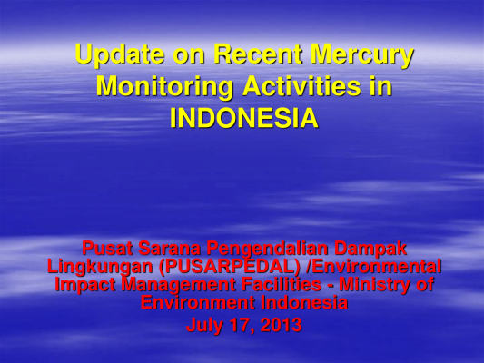 First page of Update on Recent Mercury Monitoring Activities